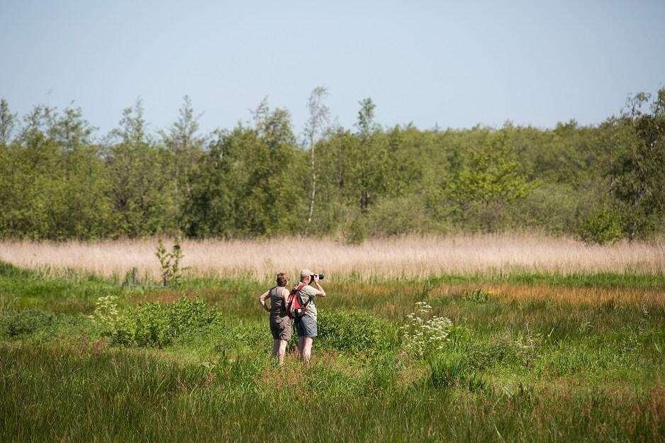 wandelen in natuurgebied de Alde Feanen