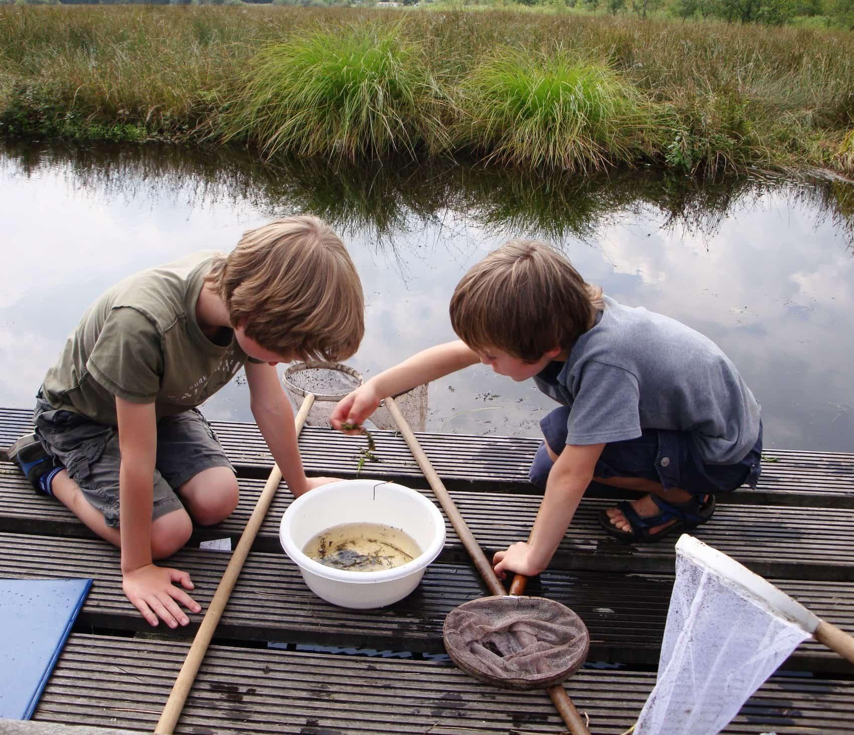 Natuur ontdekken Friesland